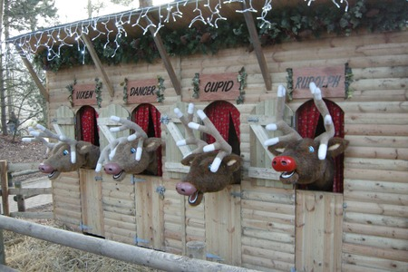 Animated reindeer at Center Parcs Sherwood Forest