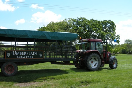 Tractor and trailor rides at Umberslade Farm Park