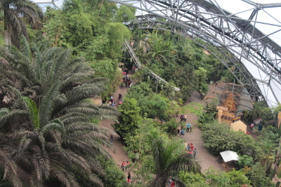 View from high platform in Eden Project African Biome