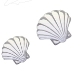 Picture to print for large underwater sea picture - sea shells